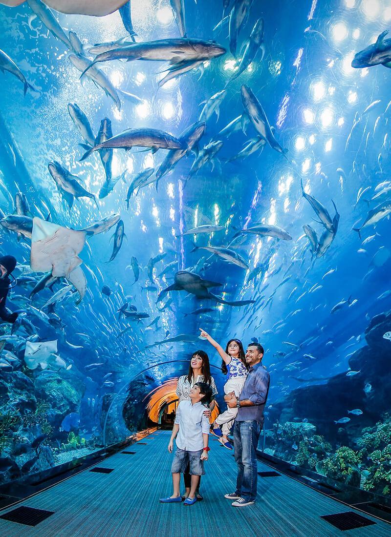 Dubai Aquarium-use-this-image-now-for-aquarium-1